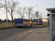 Buses at Westmount, April 2007