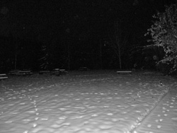 Snow Field - Night